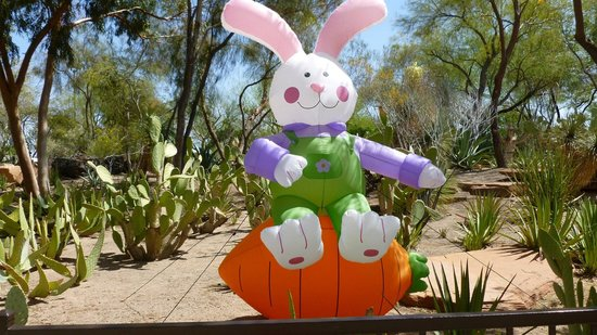 Ethel M Chocolates Factory and Cactus Garden: Happy bunny in the garden area