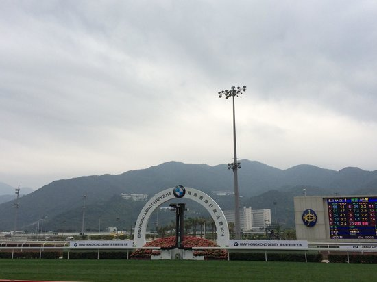 Sha Tin Racecourse : HK Derby 2014
