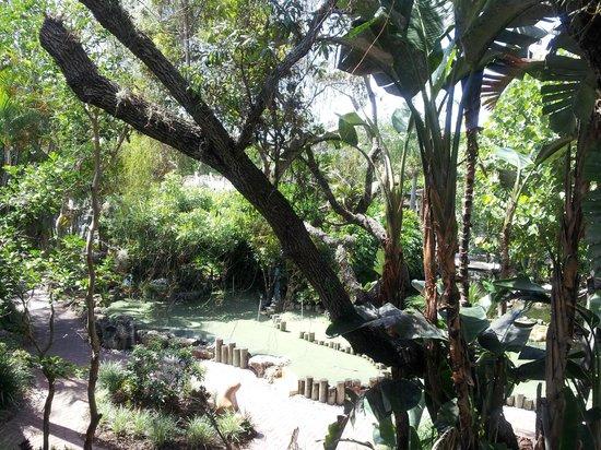 Best Western Naples Inn & Suites : giardino