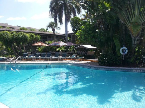 Best Western Naples Inn & Suites : piscina