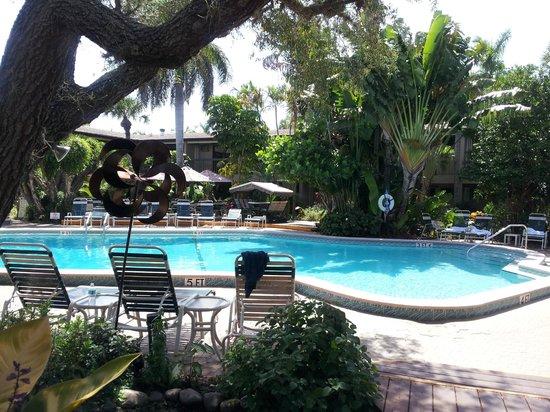BEST WESTERN Naples Inn & Suites: piscina