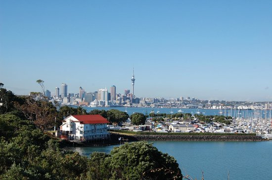 Auckland Takapuna Oaks : Skyline and bayswater marina from grounds