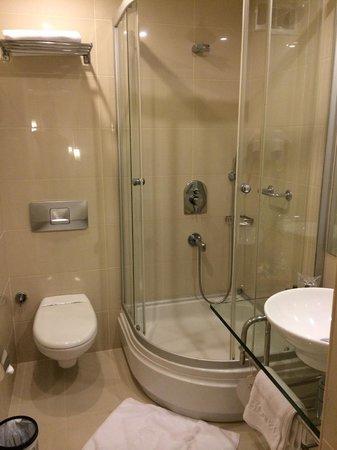 Kalyon Hotel Istanbul : Bathroom
