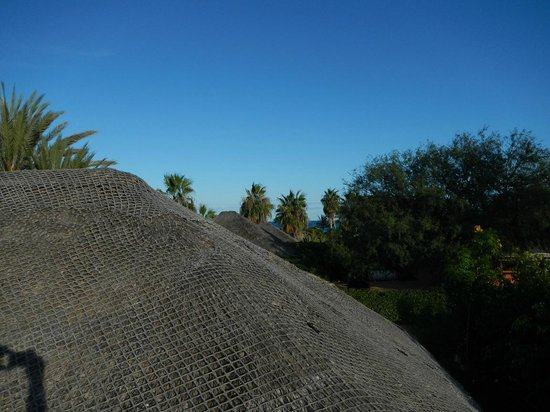 Cabo Pulmo Casas: view from the roof