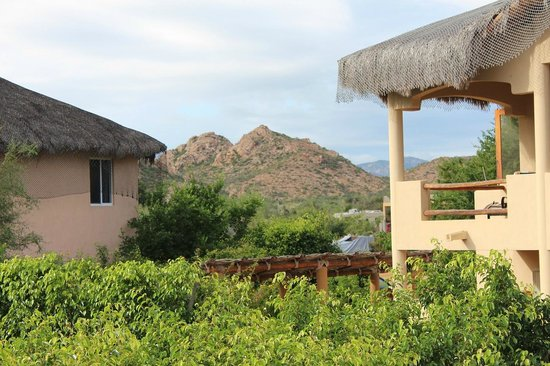 Cabo Pulmo Casas: mountains from the roof
