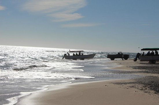 Cabo Pulmo Casas: Dive boats going out from the beach a short walk from Casa Chuparosa