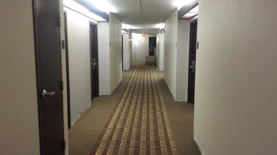 Best Western Airport Inn & Suites: guest room hallway