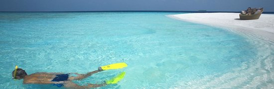 Guraidhoo Vacation Inn: Snorkeling