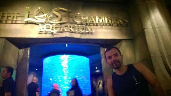 The Lost Chambers Aquarium: entrada