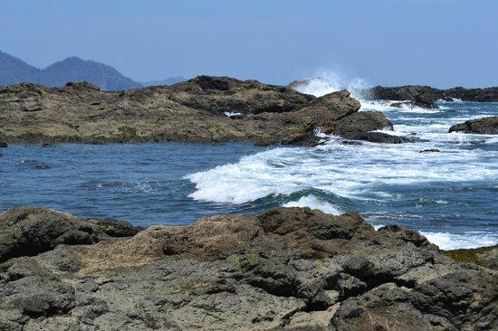 Vista Hermosa Boutique Bed & Breakfast : ocean