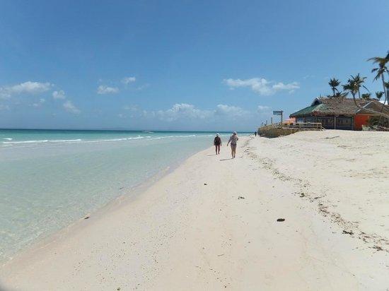 CouCou Bar Hotel & Restaurant: Пляж в 250 метрах от отеля.