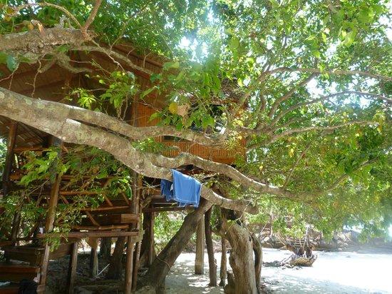 Viking Natures Resort: bungalow
