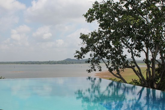 Heritance Kandalama : View from the infinity pool