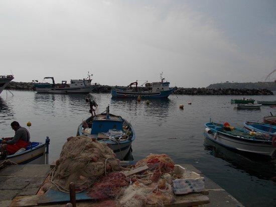 The Port of Corricella: ...sul lungomare...