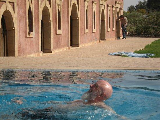 Villa Gonatouki : Pool next to our room