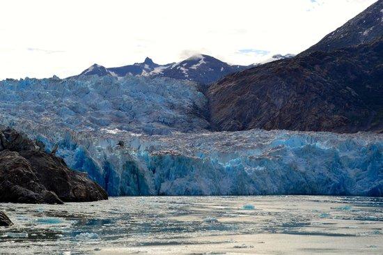 Tracy Arm Fjord : Sawyer Glacier