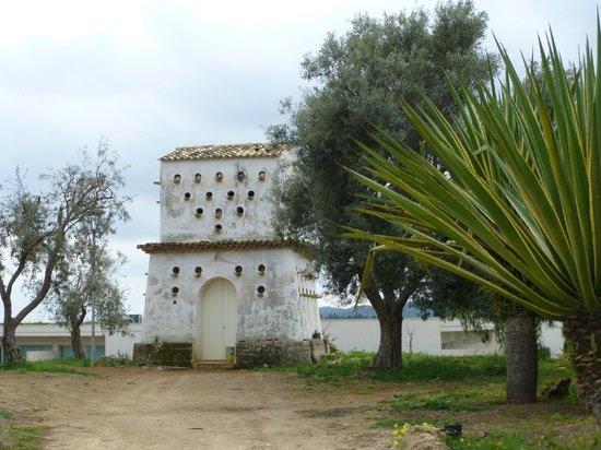 I Monasteri Golf Resort : La torre