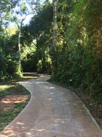 Yvy Hotel de Selva: El sendero por el cual se va a las habitaciones