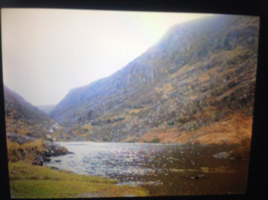 Killarney Guided Walks : KNP Ring of Kerry highlight