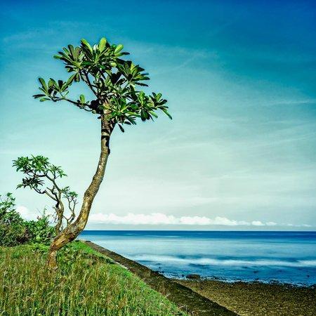 Alang-Alang Boutique Beach Hotel: Sisi Kiri Pantai