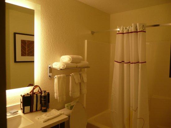 Hawthorn Suites by Wyndham Orlando Altamonte Springs: Bathroom with small vanity.