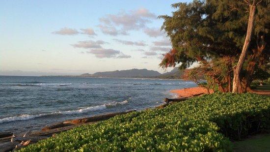 Kauai Coast Resort at the Beachboy : View of beach