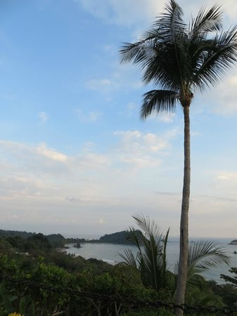 Hotel Costa Verde: View from Studio Plus II pool (towards national park)