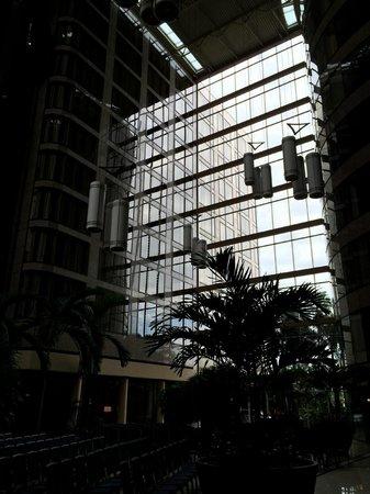 The Westshore Grand, A Tribute Portfolio Hotel, Tampa : Atrium