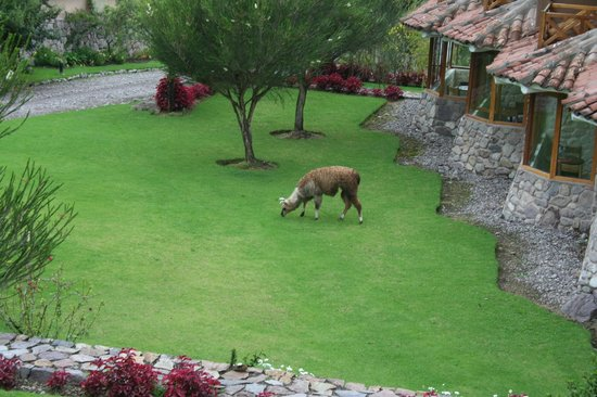 Casa Andina Premium Valle Sagrado Hotel & Villas: See ground floor sitting area