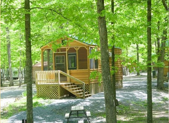 Yogi Bear's Jellystone Park at Natural Bridge: Outside of the small deluxe cabin