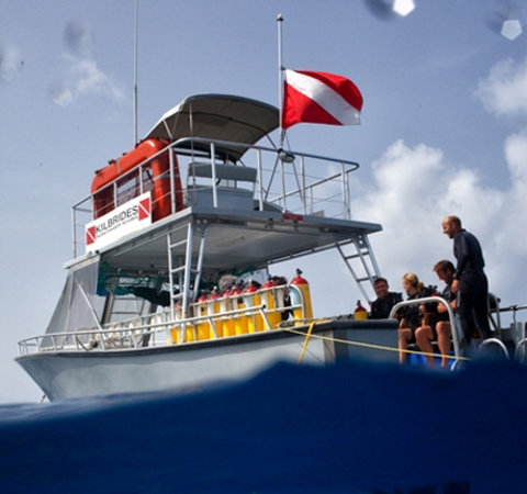 Sunchaser Scuba Ltd.: Sunchaser, one of our dive boats