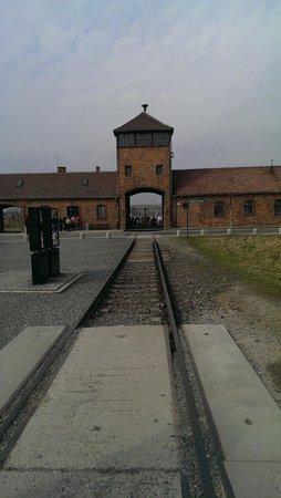 Escape2Poland - tours and transfers : birkenau