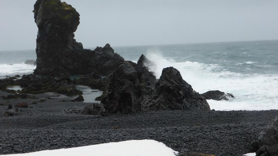 Goecco Expeditions and Tours : black pebble beach