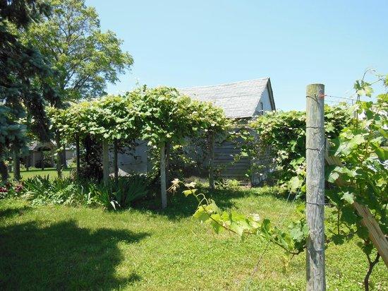 Hawk Haven Vineyard and Winery: Hawk Haven Winery