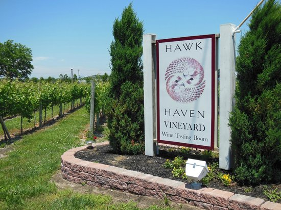 Hawk Haven Vineyard and Winery: Hawk Haven Winery