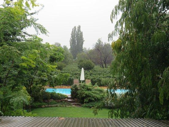 Finca Adalgisa Wine Hotel, Vineyard & Winery: pool area