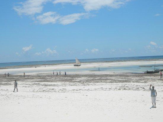 Neptune Village Beach Resort & Spa: отлив
