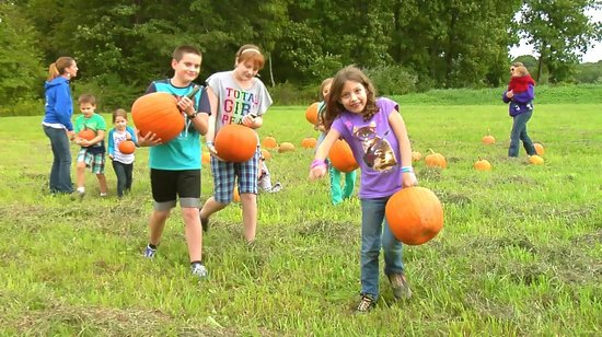 Apple Blossom Village: Fall is Fun at Apple Blossom. Pick your own pumpkin
