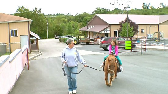 Apple Blossom Village: Pony Rides are fun to add to your next party!