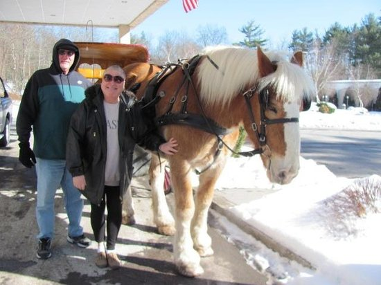 Paradise Stream Resort : complimentary horse carriage ride!