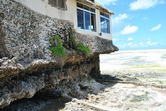 Coral Rock Hotel: Bar/restaurant above the ocean
