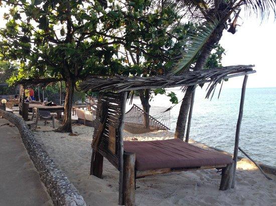 Coral Rock Zanzibar : Relax arounnd the pool