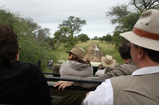 Baobab Ridge: looking for game... when rain, poncho's are available !