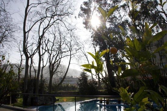 Castilla Termal Balneario de Solares: Piscinas exteriores y jardines