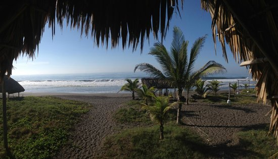 Paredon Surf House: View from bungalow.