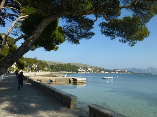 Hotel Illa d´Or: Pine walk; a level walk to town