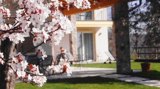 B&B Colle San Giorgio: Springtime!