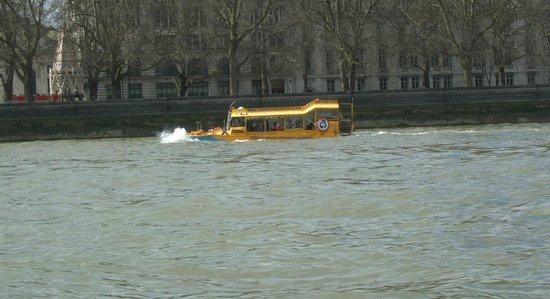London Duck Tours: Duck Tour