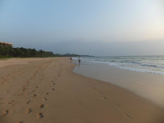 Frans' Guesthouse: Strand van Aluthgama