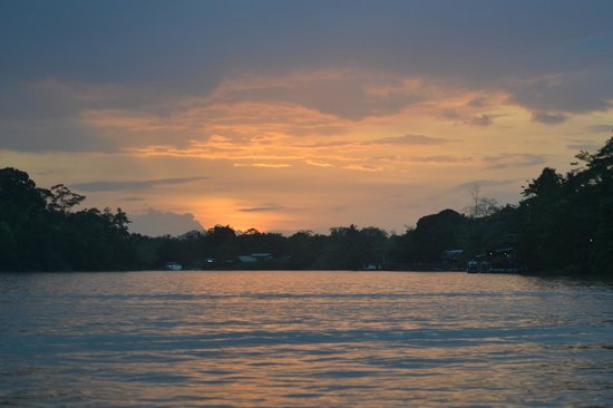 Sukau Rainforest Lodge: river trips